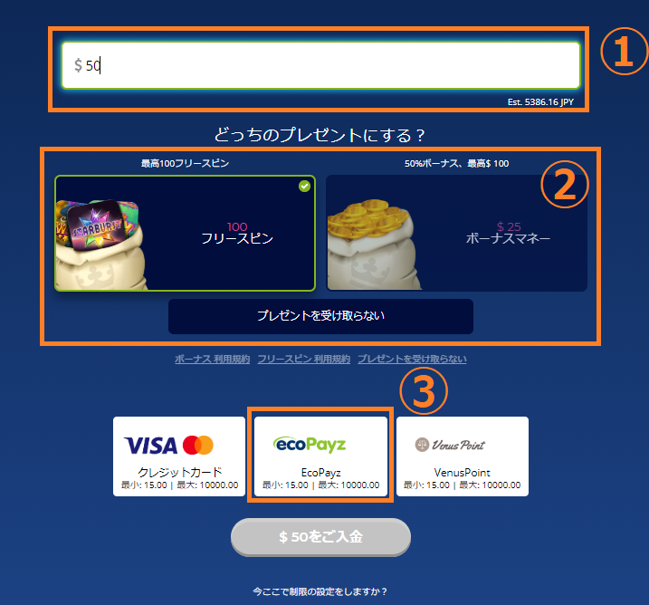 【図解】カジ旅のエコペイズ入金出金マニュアル!限度額や手数料も