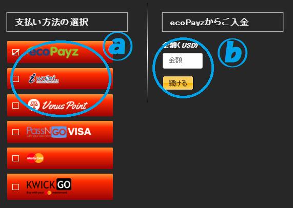 【図解】エンパイアカジノの入金方法一覧!最低入金金額・入金限度額・手数料も解説