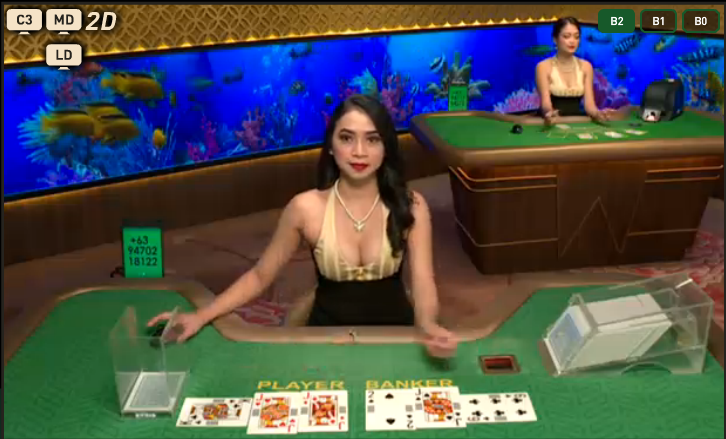 【図解】ライブカジノハウスの入金方法一覧!最低入金金額や入金限度額や手数料も紹介